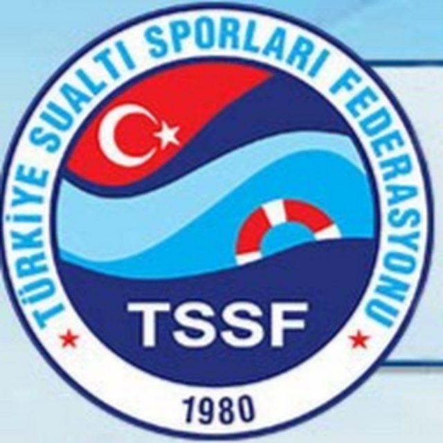Sualtı Hokeyi Federasyon Kupası Gruplar