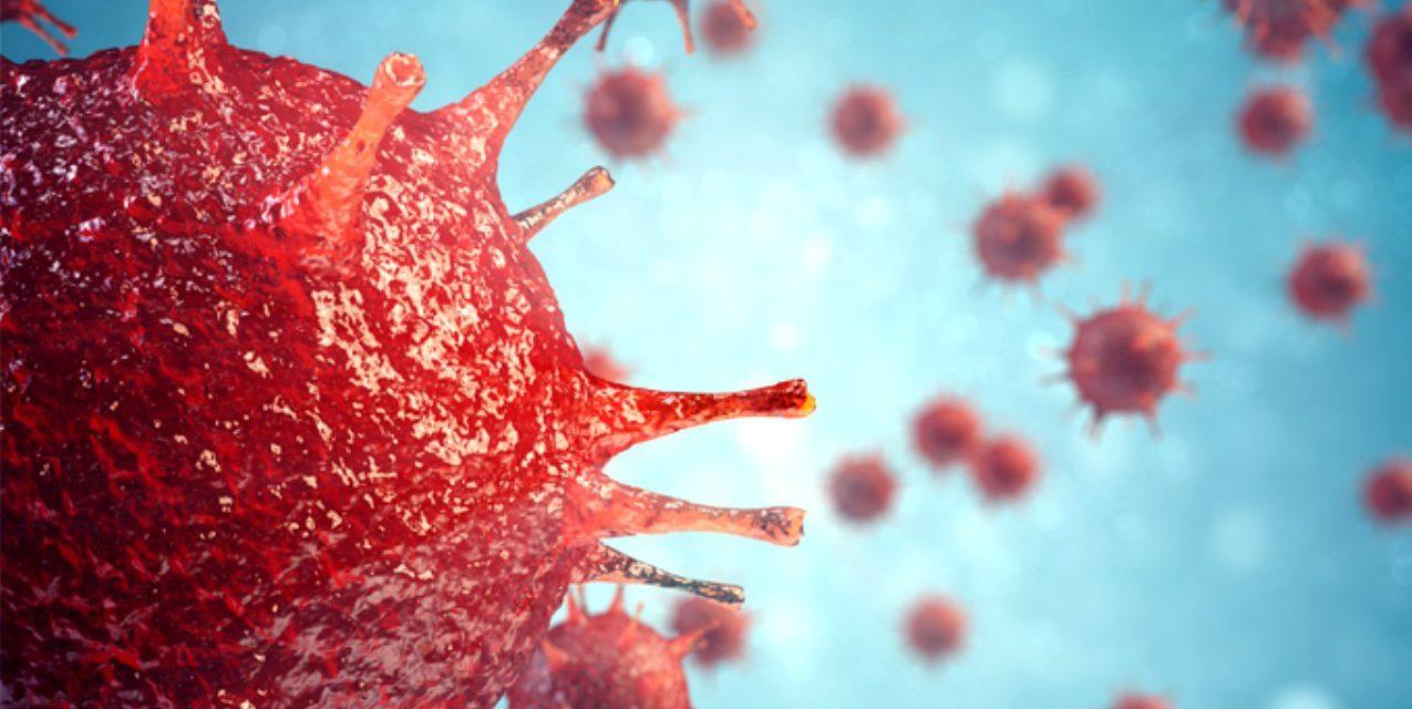 https://yuzme.org.tr/wp-content/uploads/2020/03/Turkiye'deki-Corona-Virus-Vakasina-Karsi-universitemizde-Alinan-onlemler-5-1275x640.jpg